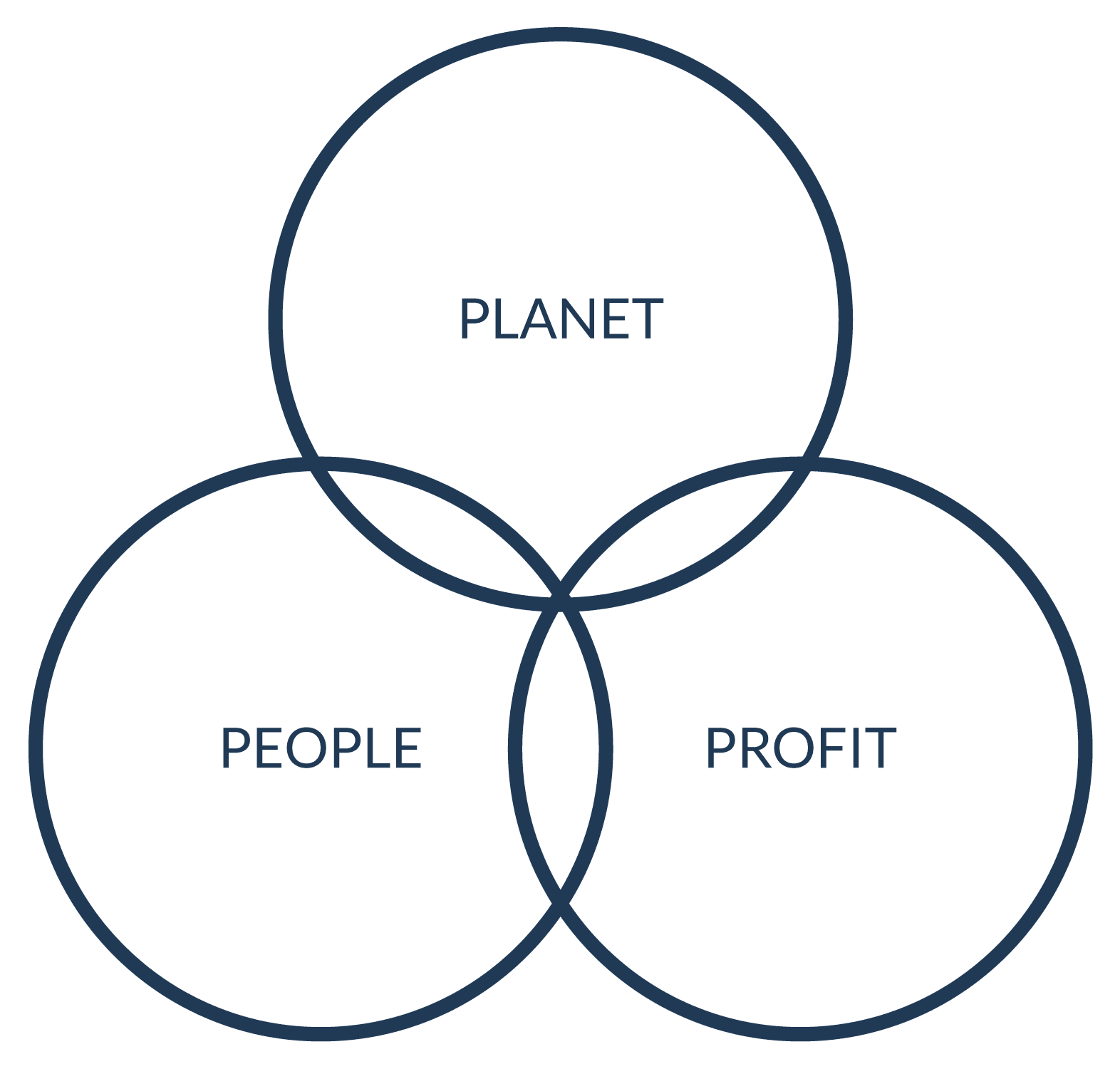 True Horizon - Environmental advisors and sustainability strategists for businesses.